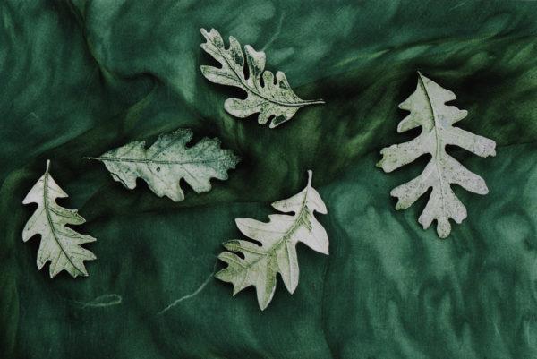 Pewter Leaves