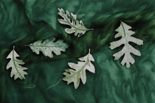 Pewter Leaves