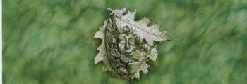 2005 Greenman